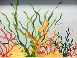 Coral Sea Beach Wall Mural.jpg